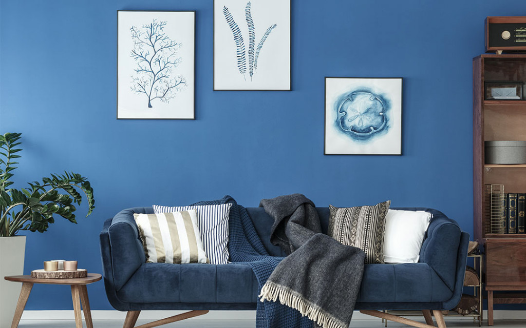 10 Paint Colors That Go Well With Shades Of Blue For Home Space Nippon Paint India