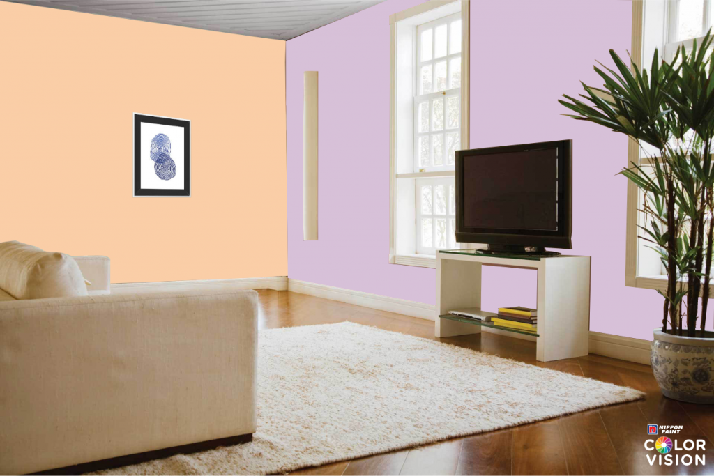 day light home painting ideas