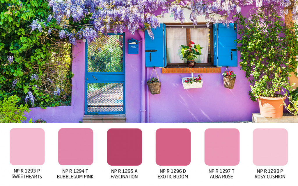 wall colour for decorating your indoor garden walls