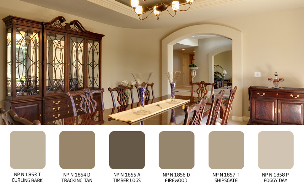 wall colour for luxury looking dining room