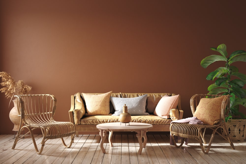 Brown Color Interior wall Paint