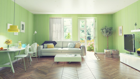 Interior Modern Living Green Color