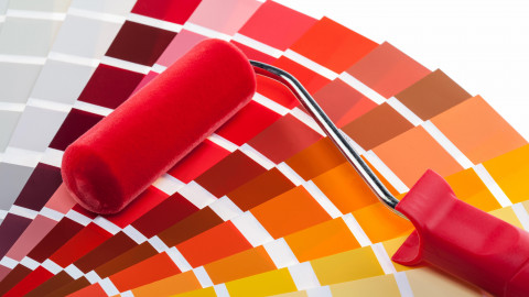 Paint Roller with color palette